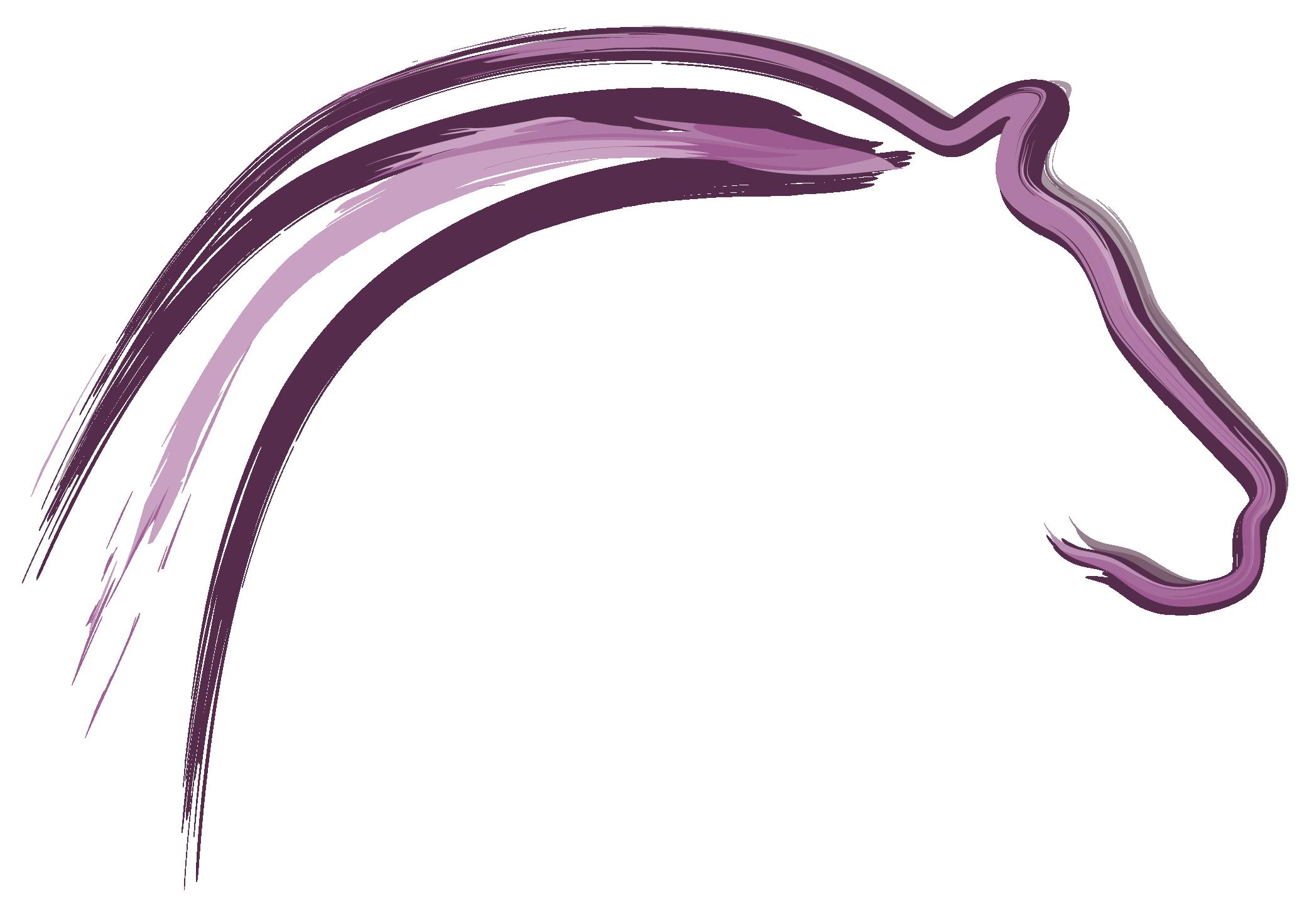 Zadelmakerij BZM